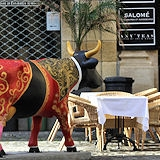 cow-bordeaux-59_mini